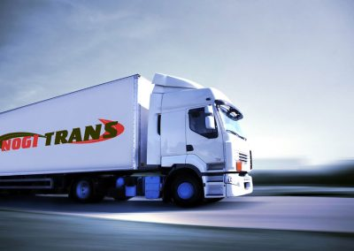Ноги Транс – лого дизайн, дизайн на визитки, уеб сайт