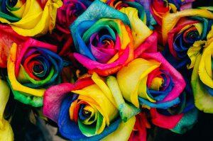 Уеб дизайн цветове